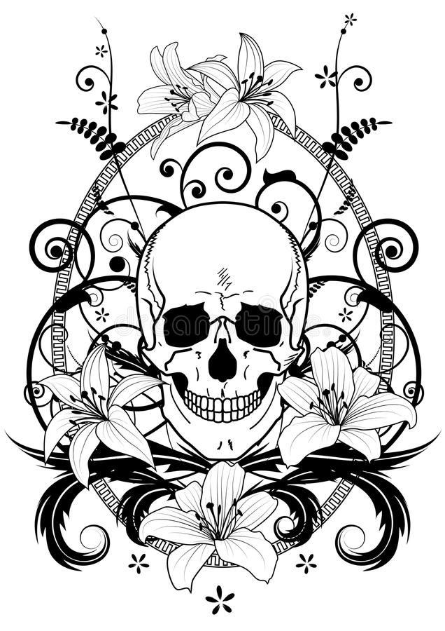 Skull And Lily Royalty Free Stock Photos