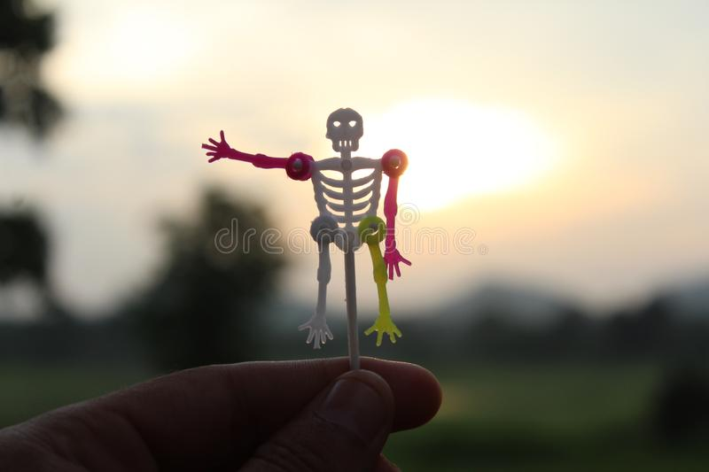 Skull man on hand in sunset stock photography