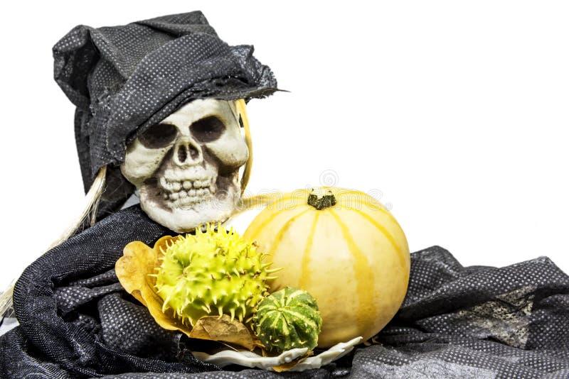 Skull monster and pumpkin royalty free stock photos