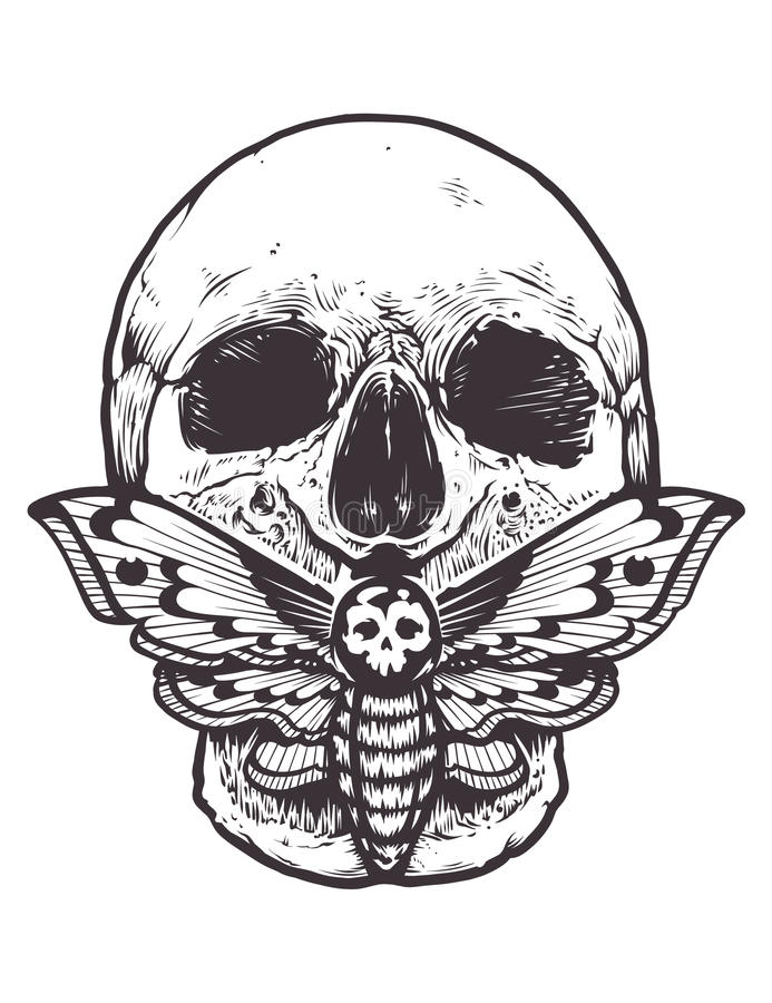 Skull with Moth Vector. Skull with deaths head hawk moth sitting on his mouth. Tattoo style graphic design. Monochrome vector illustration isolated on white vector illustration