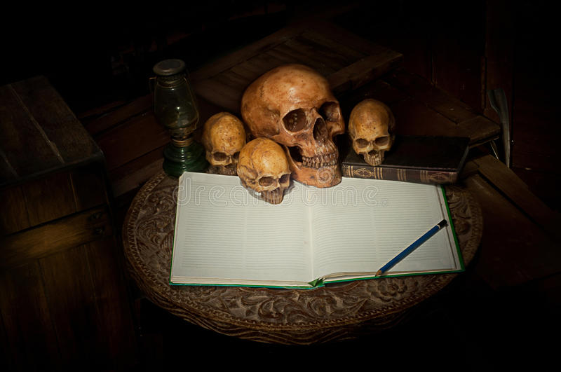 Skull and notebook on old wood royalty free stock photography
