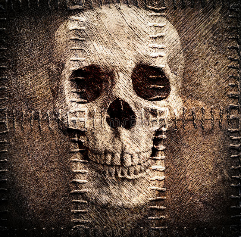Skull on old sacking. A skull on the old sacking royalty free illustration