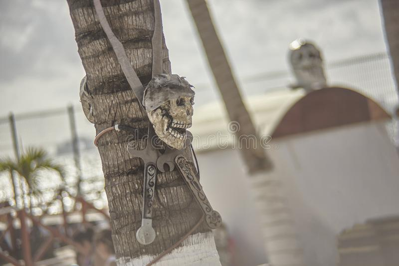 Skull Death Symbol. Skull and pair of knives attached to a palm tree: symbol of death and pirates stock photo