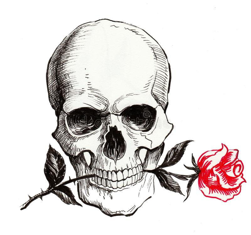 Skull With A Red Rose Stock Illustration. Illustration Of