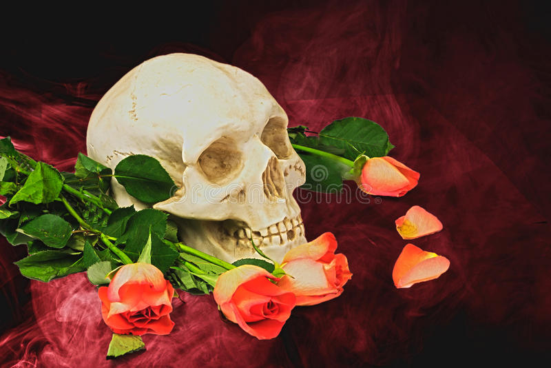Skull with red roses. Human skull and flowers on red royalty free illustration