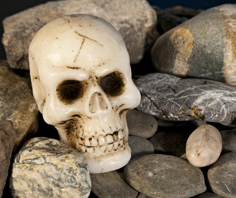 Skull and rock stock image