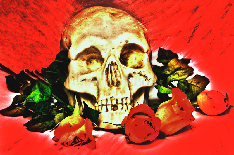 Skull and roses. Human skull and flowers on red royalty free illustration