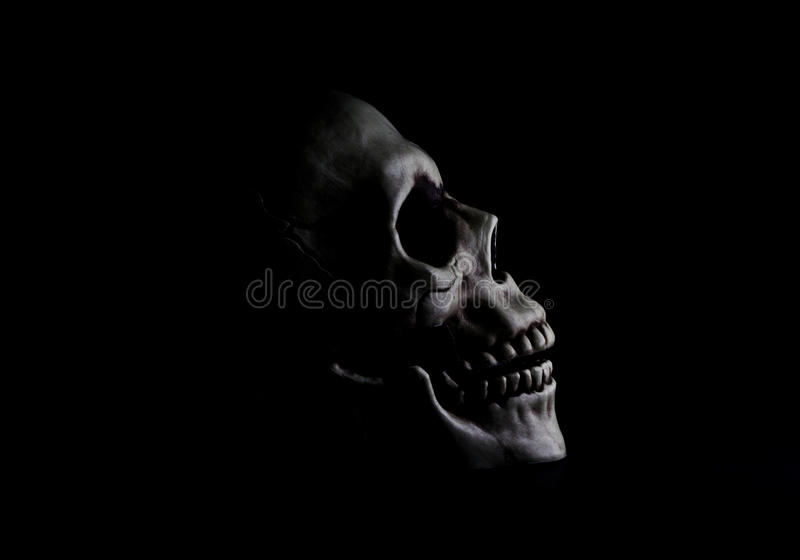 Skull in the shadows stock image