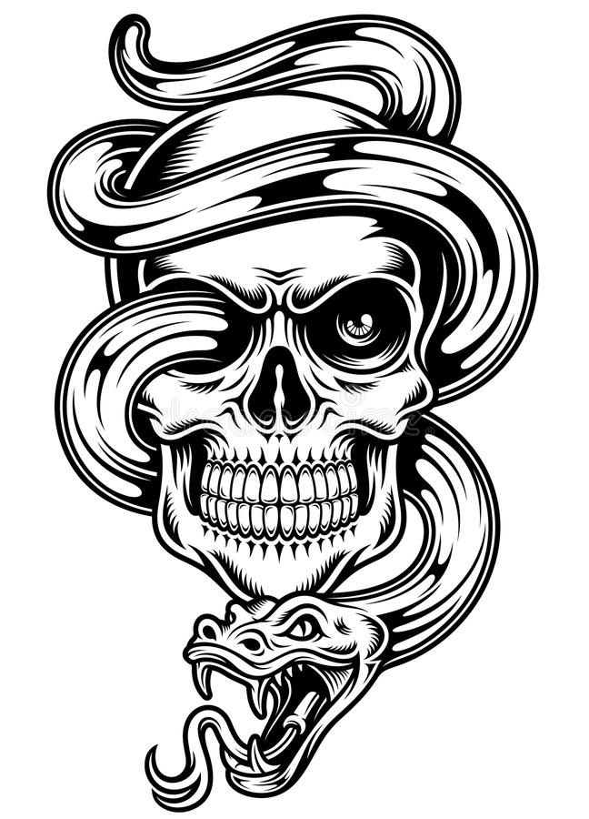 Skull With Snake Stock Vector Illustration Of Decoration