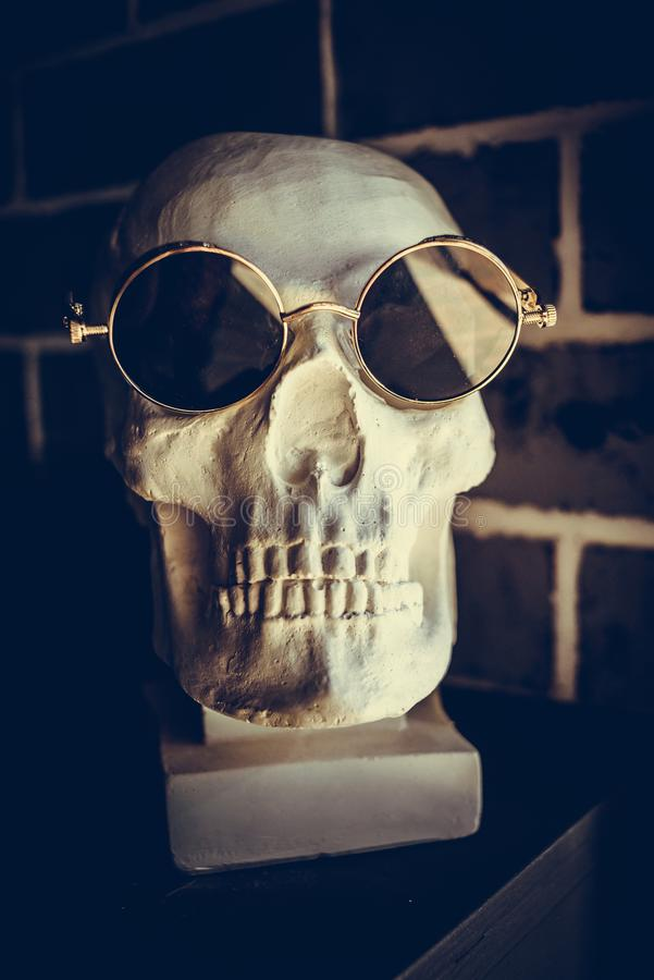 Skull in sunglasses is on the shelf. Close-up stock photo