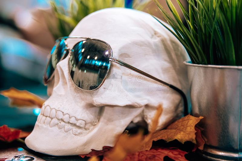 Skull with sunglasses in a tattoo studio on the table. Skull with sunglasses in a tattoo studio, head, skeleton, anatomy, halloween, horror, scary, death, face royalty free stock photos