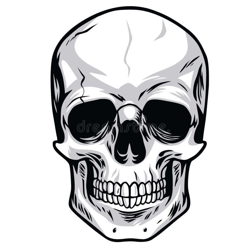 Skull Vector. Human Skull Bone Vector Illustrations stock illustration