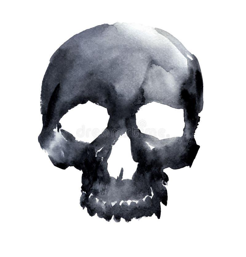 Skull. Watercolor black skull. vector illustration royalty free illustration