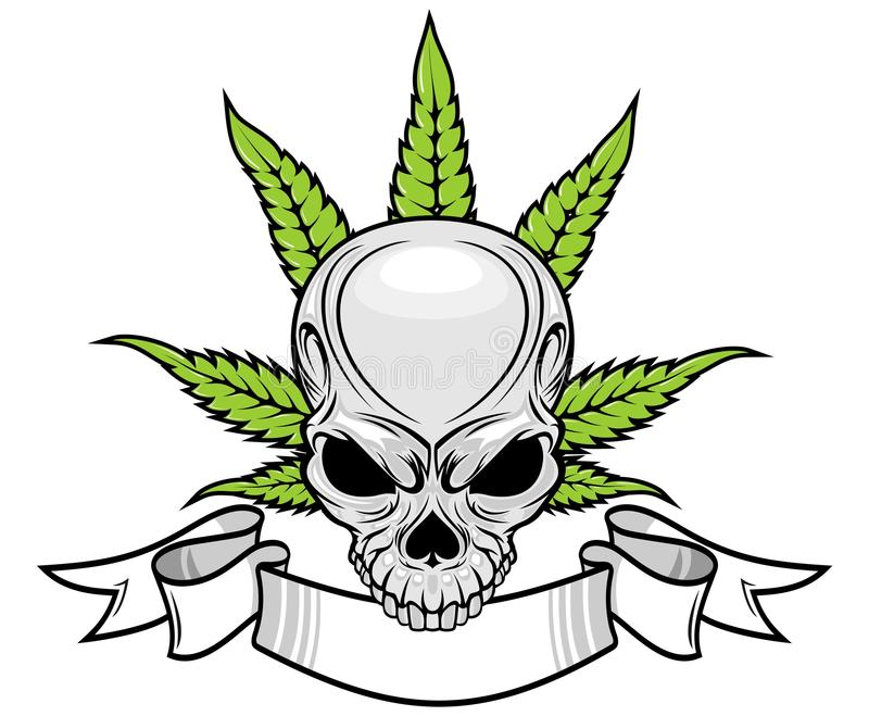 Skull and weed stock illustration