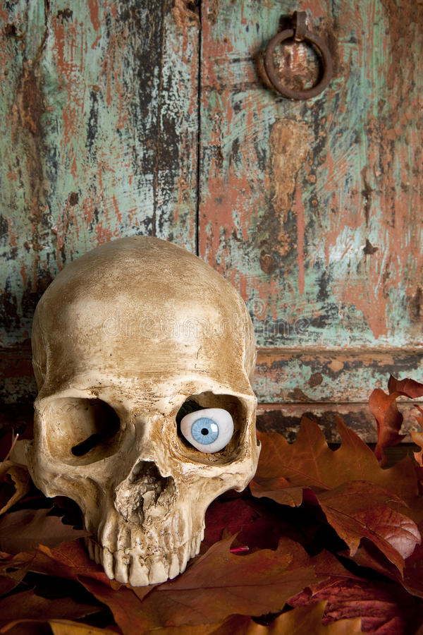 Free Skull With Glass Eye Stock Photography - 26681382