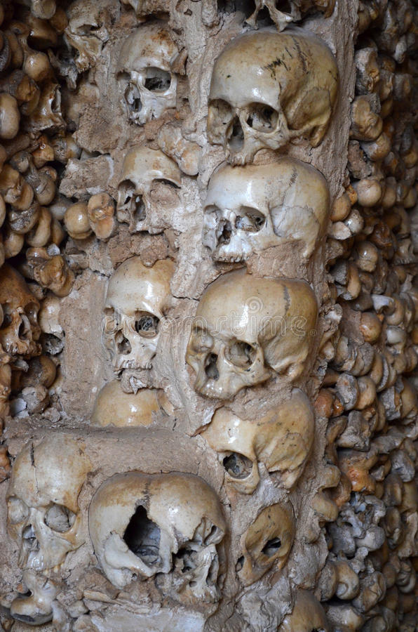 Download Skulls and bones stock photo. Image of cemetery, collection - 28519812