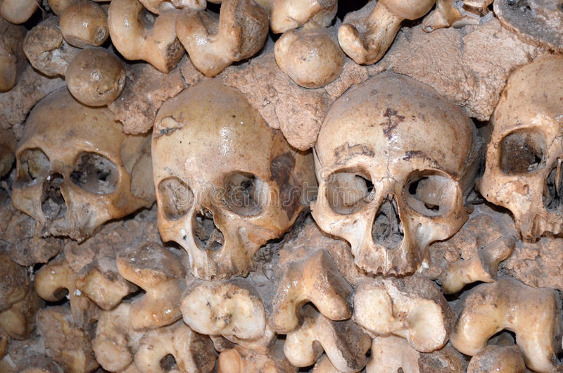 Download Skulls and bones stock photo. Image of danger, cave, black - 28519838