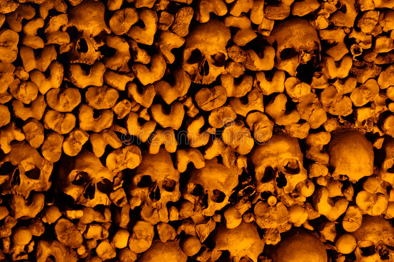 Download Skulls and bones stock photo. Image of cement, skulls - 3577130
