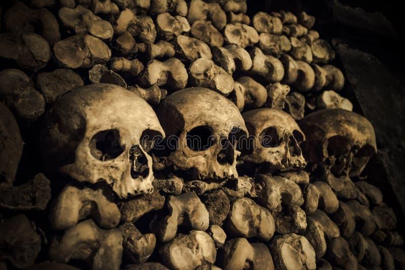 Skulls and bones in Paris Catacombs. Spooky background stock image