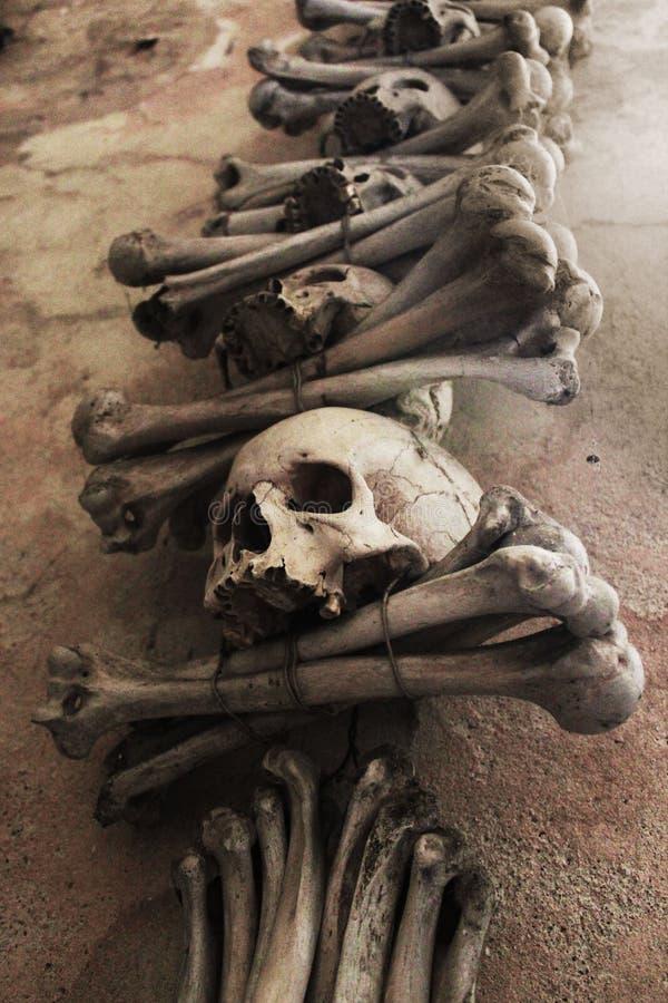 Skulls and Crossbones stock photos