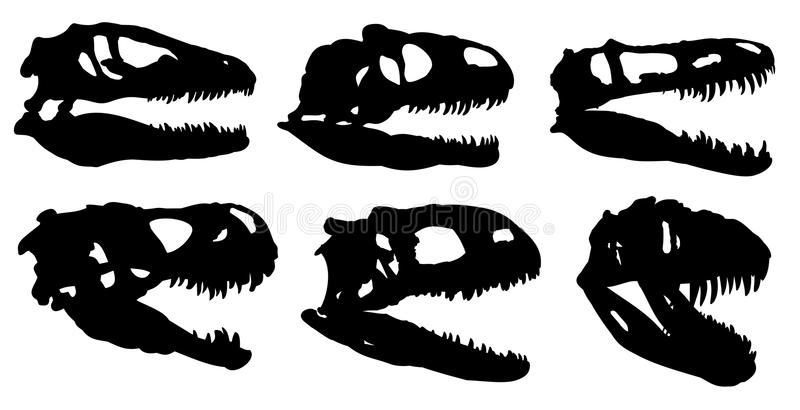 Skulls of dinosaurs. stock illustration