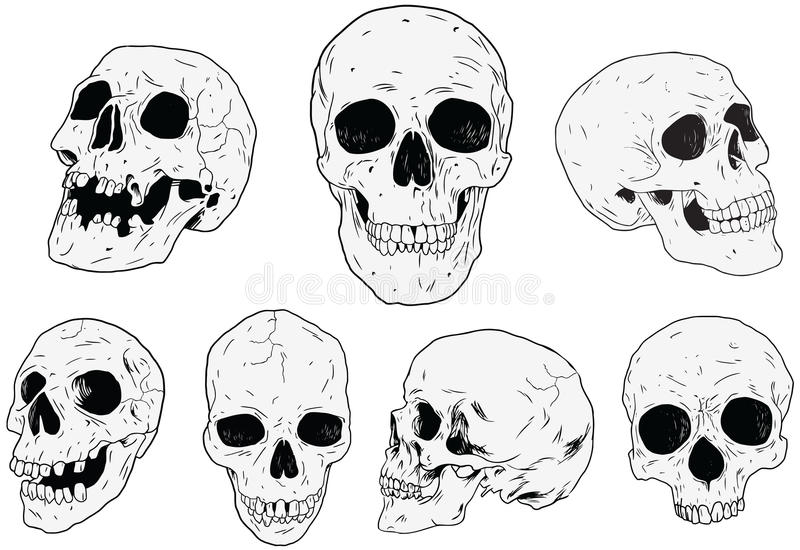 Skulls - Hand Drawn vector illustration