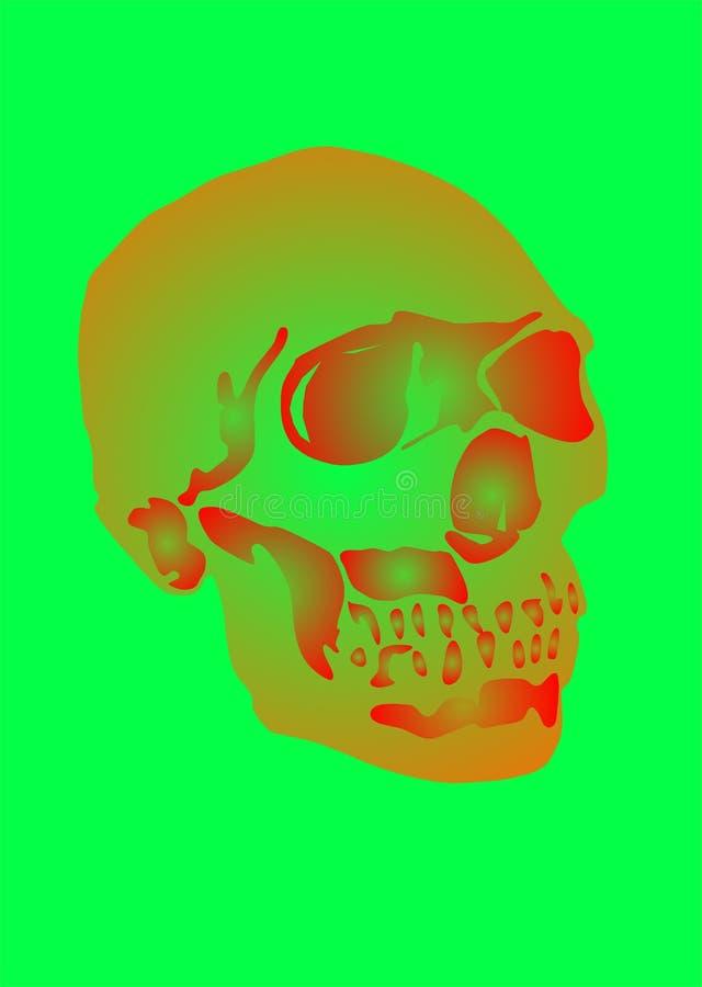 Skully stock de ilustración