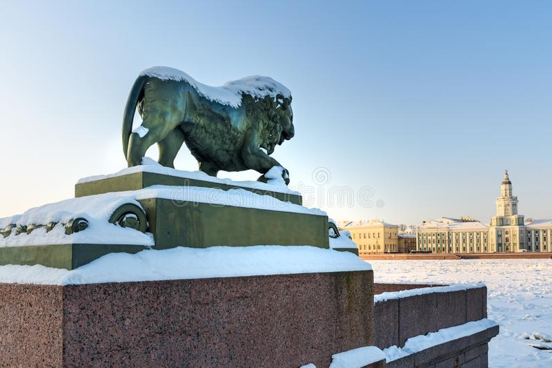 Skulptur av lejonet på den Admiralteiskaya invallningen i vinter okhtinsky petersburg russia för bro saint arkivbild