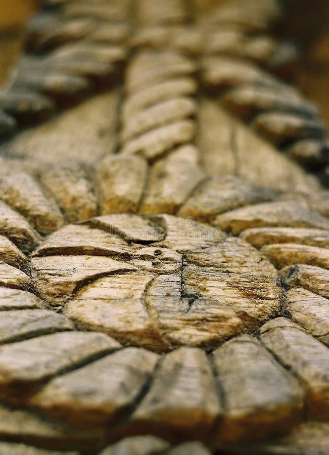 Skulptur Im Holz Lizenzfreie Stockfotos