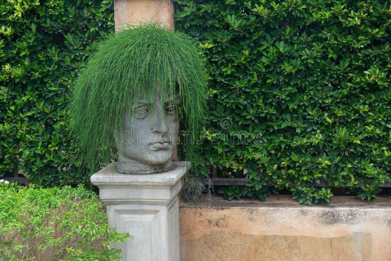 Skulptur med den gröna väggen för tjänstledighethår- och busketräd arkivbild