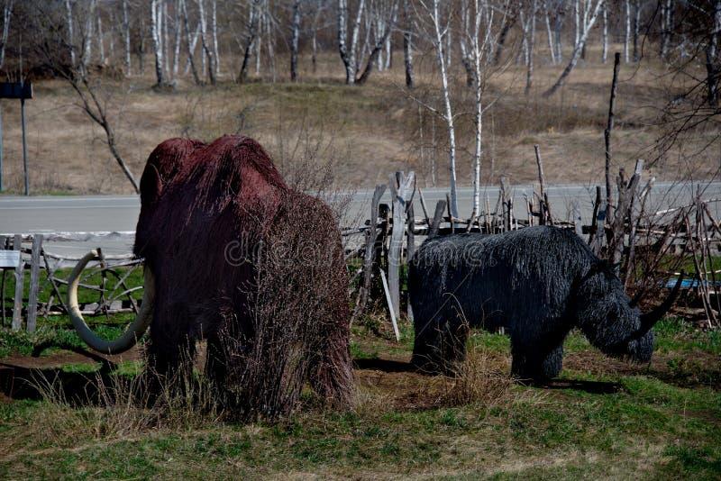 Skulpturer som göras av trä av Altai förlage i konsten och person som tillhör en etnisk minoritet, parkerar `-legend`, royaltyfri fotografi