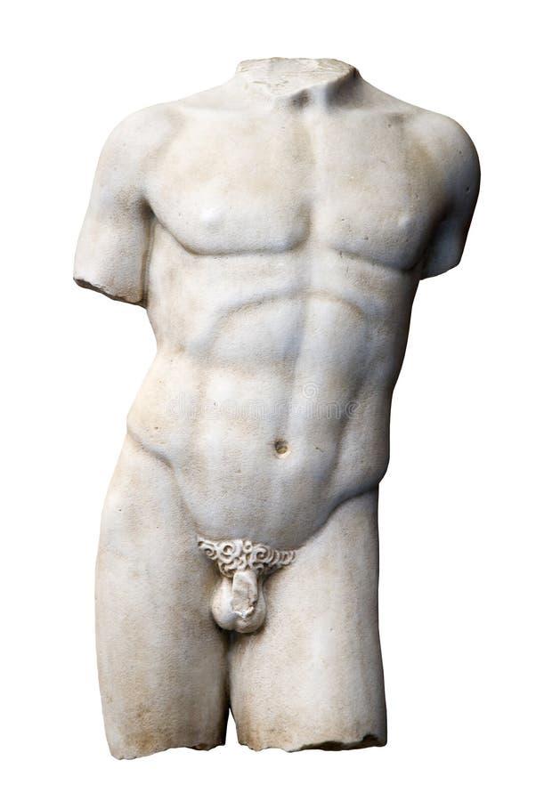 skulpturtorso royaltyfri bild
