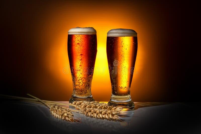Skummigt öl för mörkt exponeringsglas två med öron av vete på ljus backgroun royaltyfria bilder