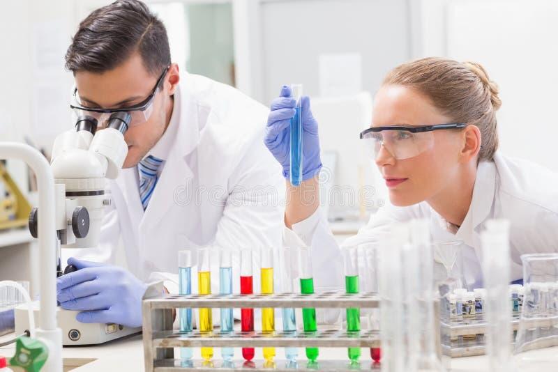 Skupiający się naukowowie egzamininuje próbnej tubki zdjęcie royalty free