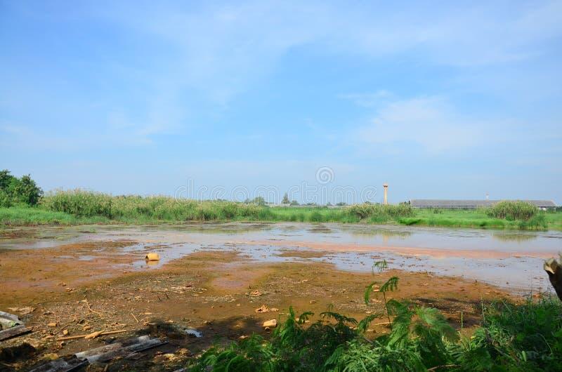 Skutki Środowiskowi od substancj chemicznych i ciężkich metali w ziemi zdjęcie royalty free