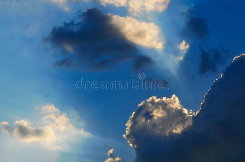 Download Sky stock image. Image of bright, summer, solitude, silhouette - 10605211