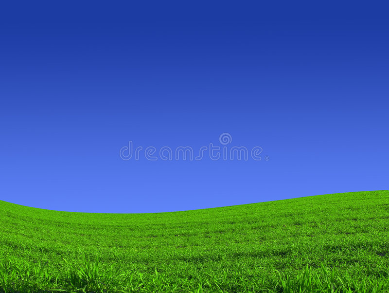 Sky. Spring landscape - green fields with blue sky