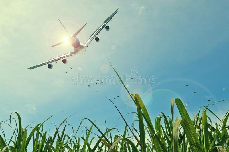 Sky, Atmosphere Of Earth, Grass, Air Travel royalty free stock photography