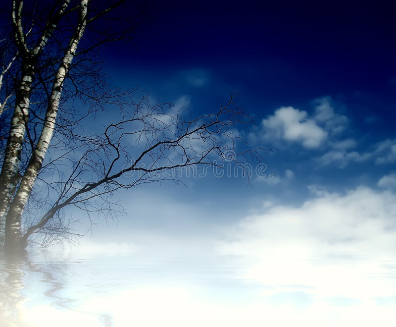 Sky and birch. Landscape, blue sky with clouds birch tree and fog royalty free stock images
