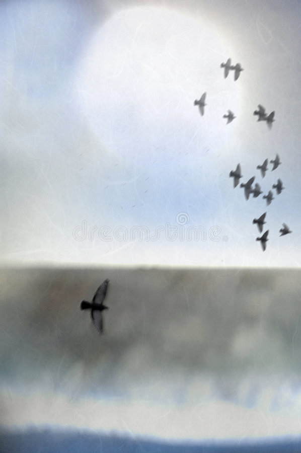 Sky And Birds. Illustration of birds in flight over an abstract landscape of sea, shore, and light. Open space as the true aviary