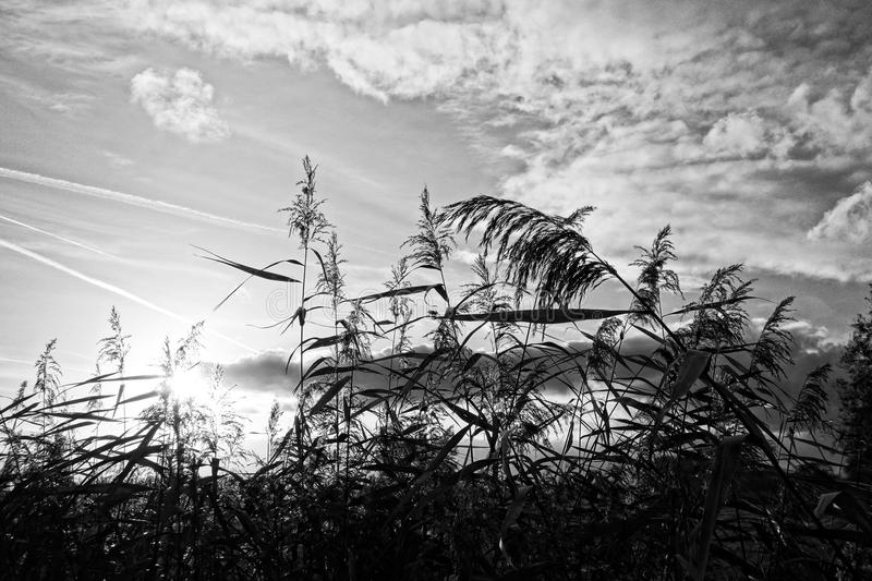 Sky, Black And White, Cloud, Monochrome Photography stock photos