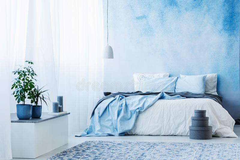 Sky blue bedroom interior with double bed, plants and grey boxes. On the floor royalty free stock images