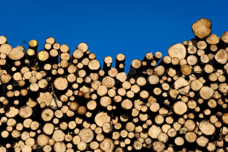 Sky blue timber wall stock photography