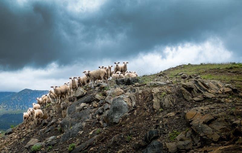 Sky, Cloud, Rock, Mountain stock photography
