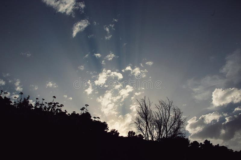 Sky with the sun rising. Sky with clouds and with the sun rising royalty free stock photography