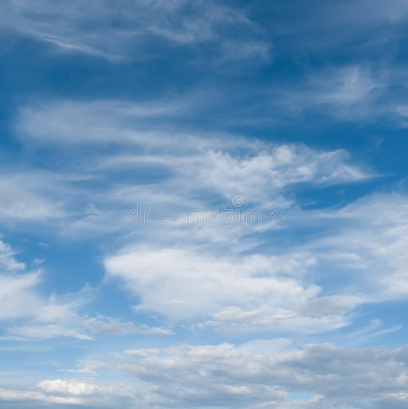 Sky and clouds. Professional shoot without birds and noise. Professional shoot without birds and noise royalty free stock photo