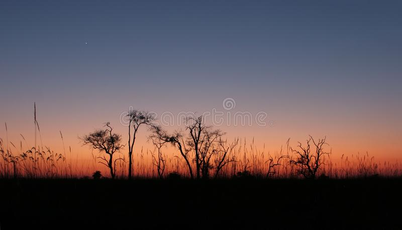 Download The Sky Color Before Sunrise. Stock Photo - Image: 6606908