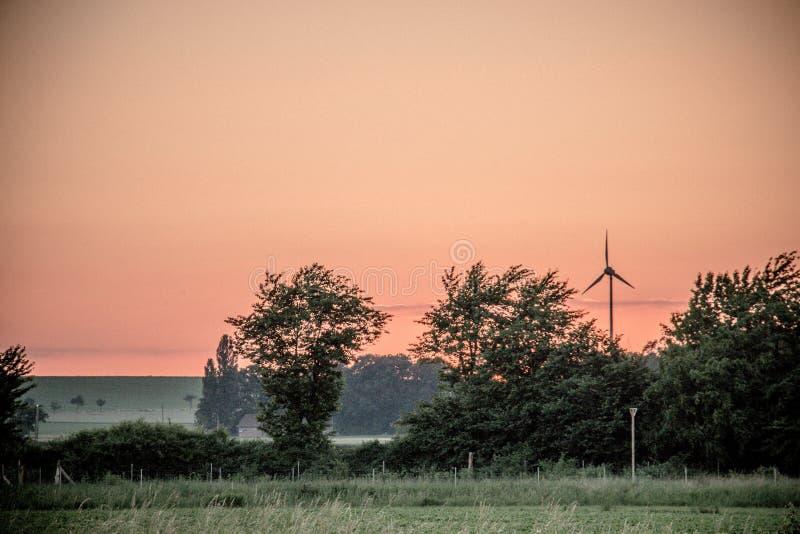 Sky, Dawn, Tree, Morning stock photography