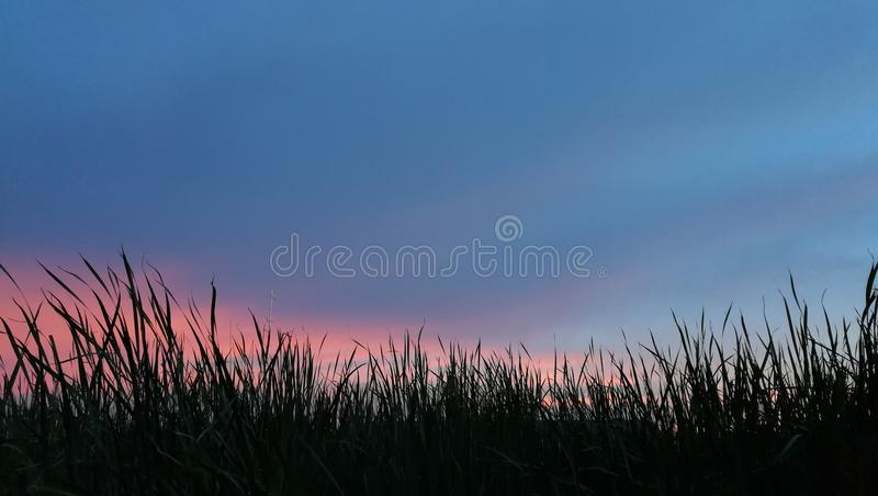 Sky with evening time stock photo