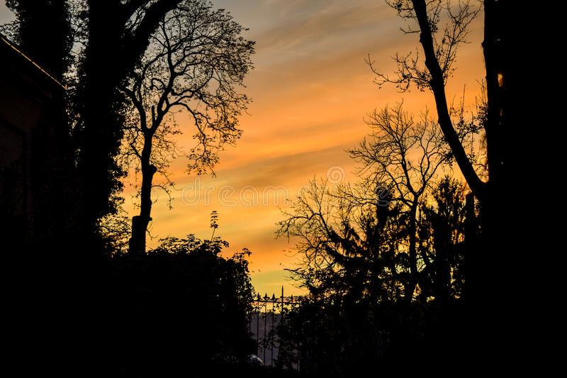 The sky viewed from the yard of an old cemetery in Sighisoara stock photo